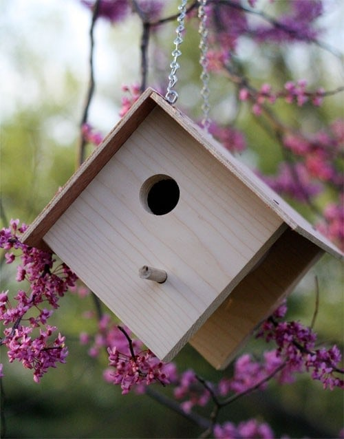 easy bird house