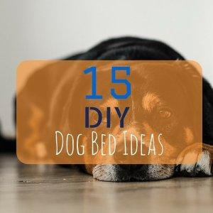 DIY Dog Bed Ideas