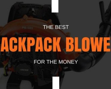 Best Backpack Blower