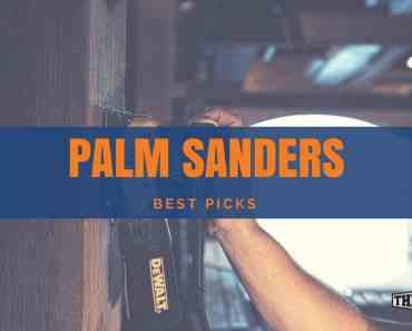 Best Palm Sanders