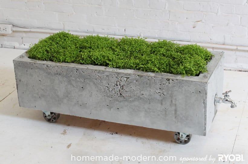 Modern Concrete Planter