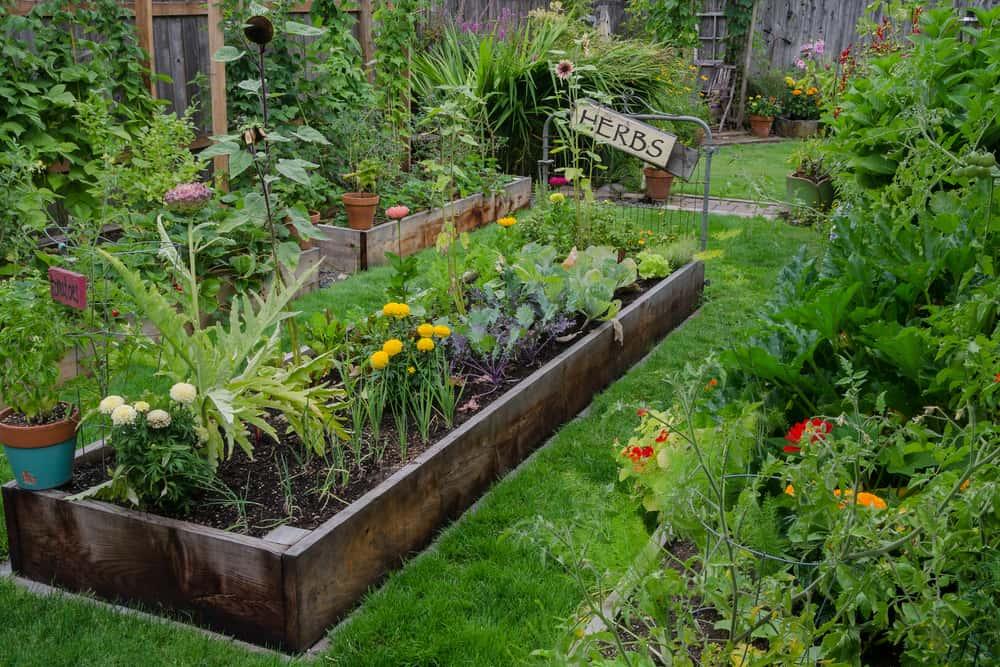 low single plank long garden