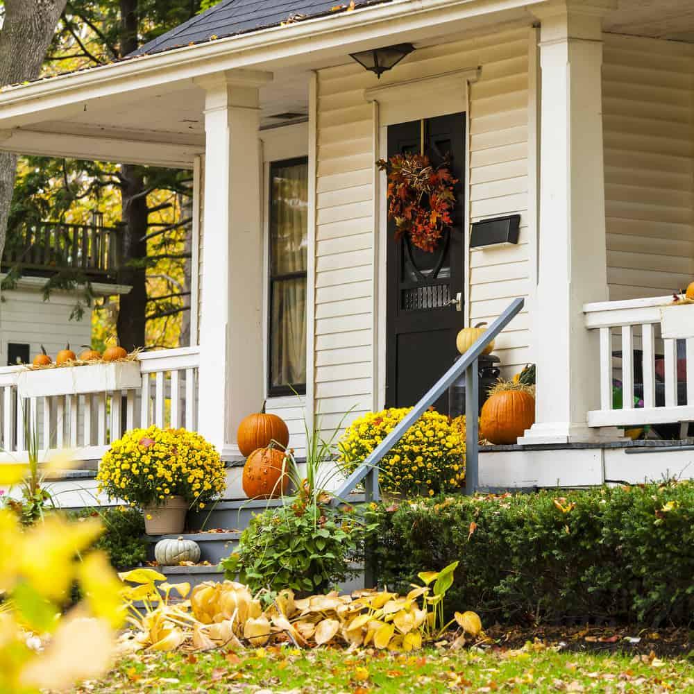 yellow landscaping pumpkins autumn