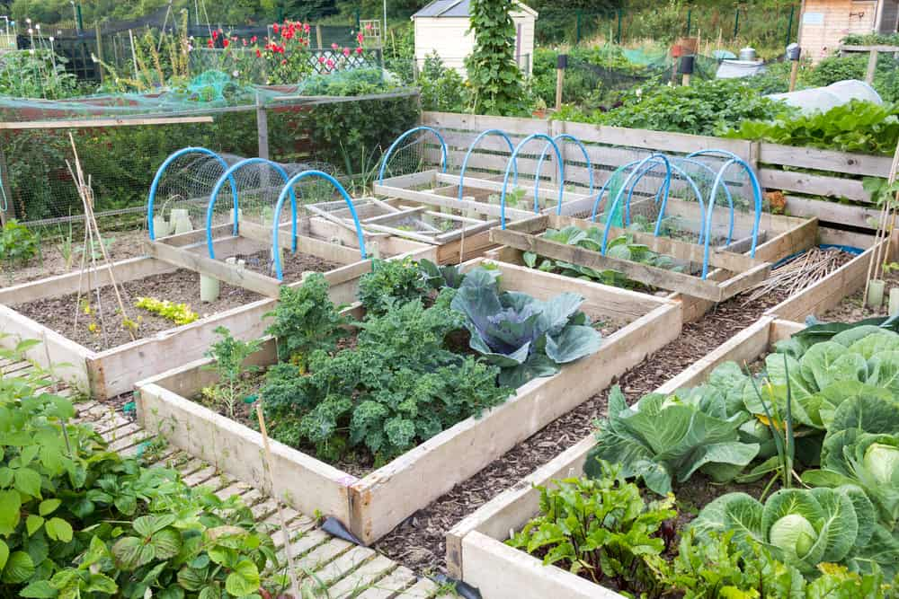 deck area of low gardens