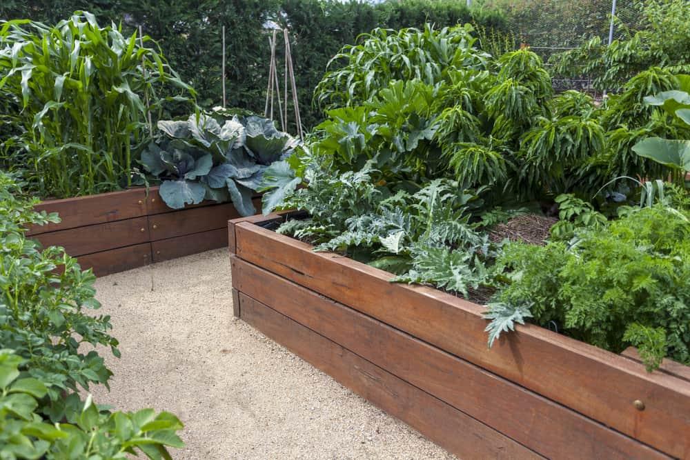 sleek medium wood gardens
