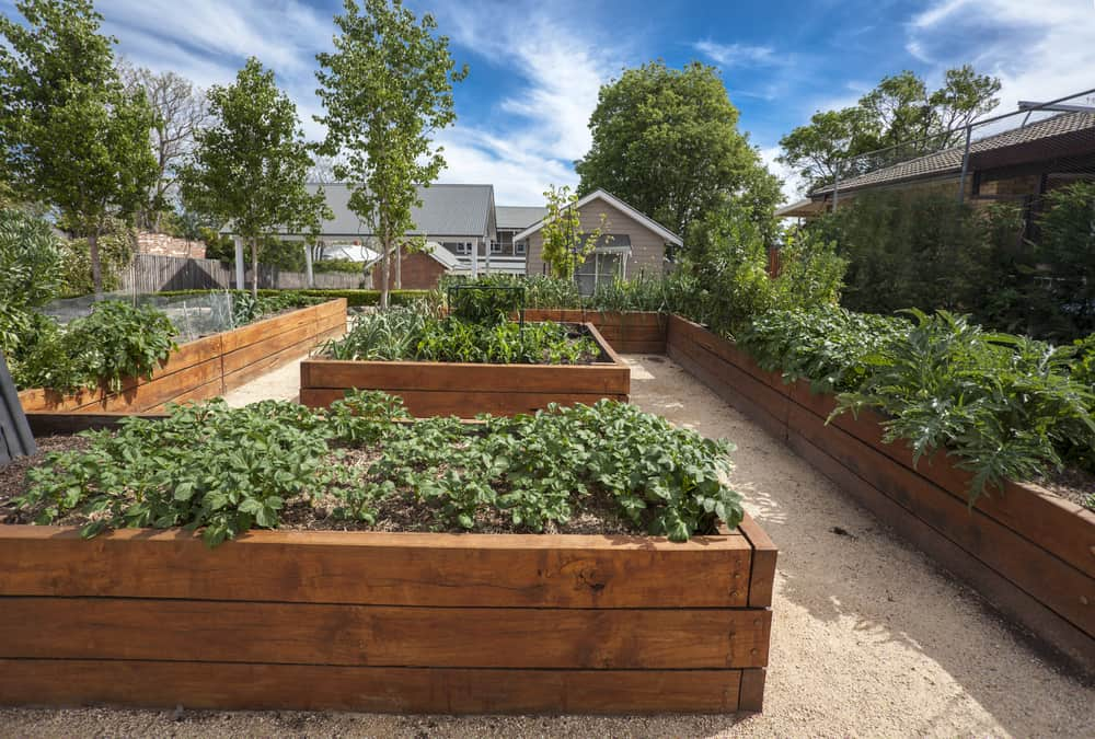 medium wood square wrapped gardens
