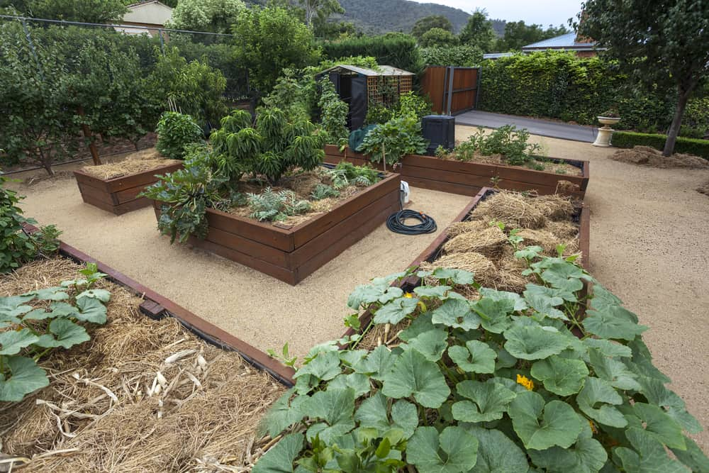 concentric raised gardens