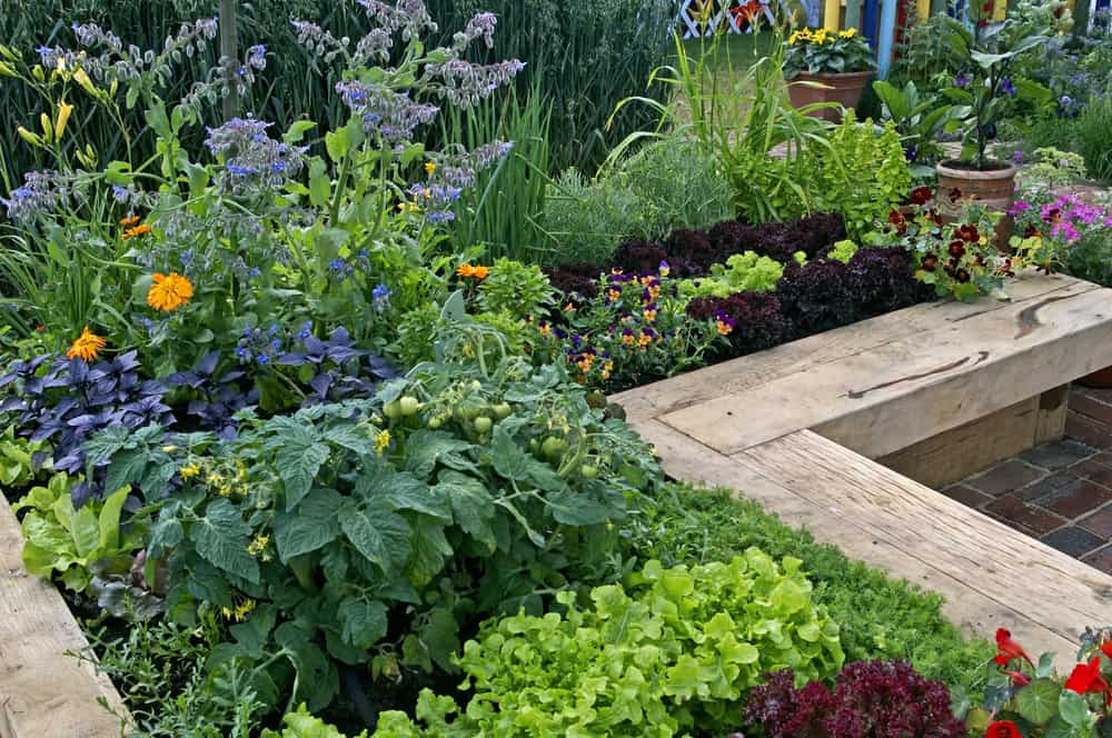 wrapped corner raised garden
