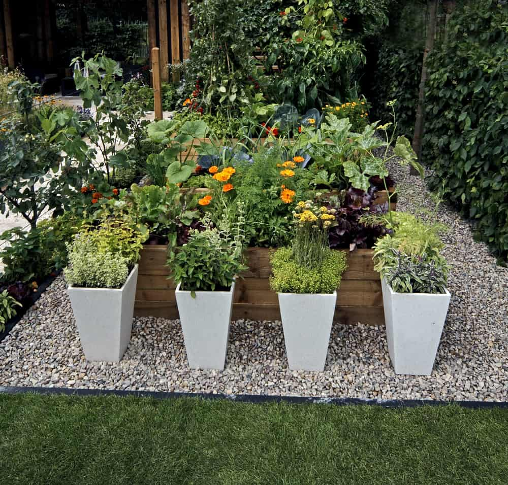garden with accent potted plants