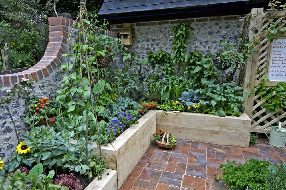 multi level raised garden