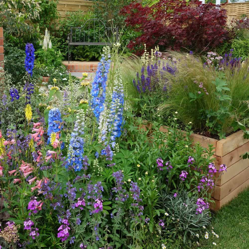 overflowing raised gardens