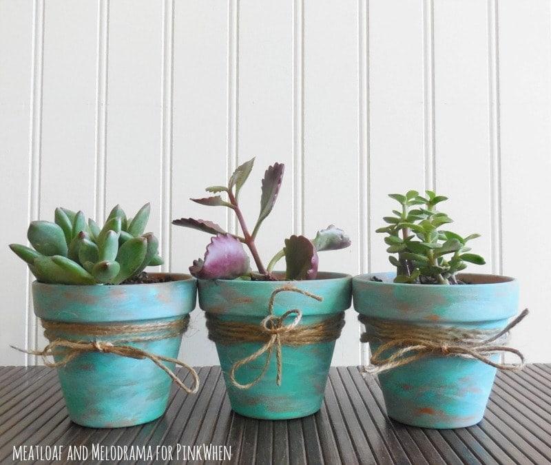 https://www.pinkwhen.com/diy-rustic-succulent-pots/thesawguy.com