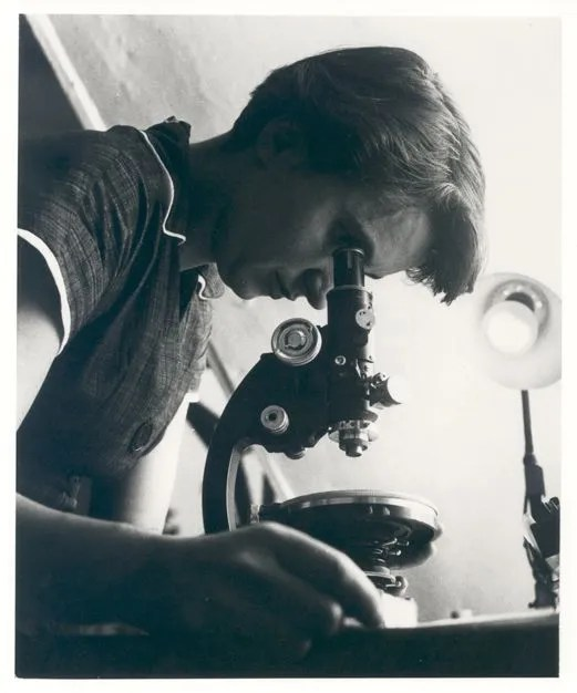 Rosalind Franklin - The Science Lab