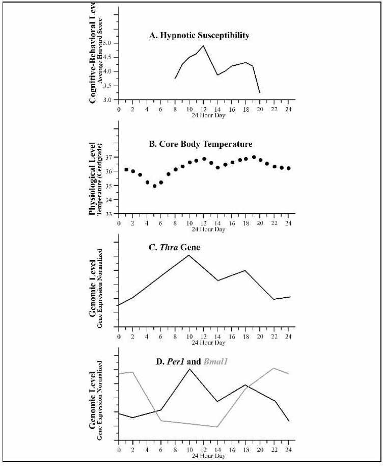 """Figure 3d. Experimental associations of hypnosis: Hypnotic susceptibility, time of day, core body temperature, and gene expression during hypnosis. From """"The Effect of Time of Day on Hypnotizability: A Brief Communication,"""" by K. J. Aldrich and D. A. Bernstein, 1987, International Journal of Clinical and Experimental Hypnosis, 35, p. 143. Reproduced with permission."""