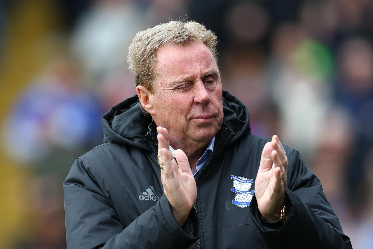 Harry Redknapp favourite to sign Rangers ace Niko Kranjcar for FOURTH time after becoming ...