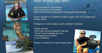Scuba Duba Dive - Become a scuba diving professional in your gap year
