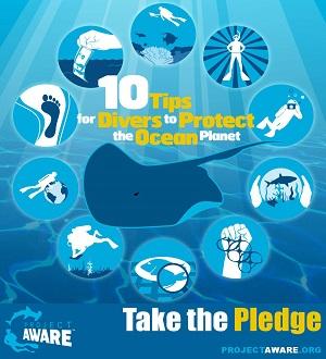 Project AWARE Pledge
