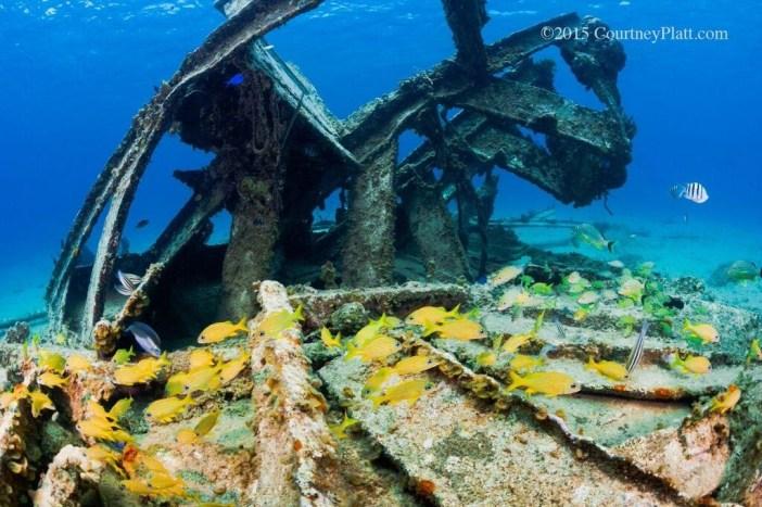 Wreck of the Balboa