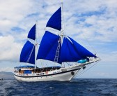The Indo Siren is back in Raja Ampat!