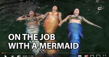 halifax-mermaids-01-11-16