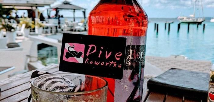 Dive Kawartha