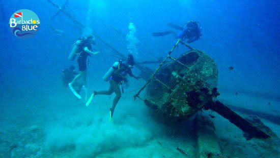 Wonders of the West Indies