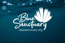 Blue Sanctuary