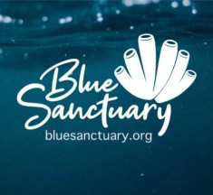 Blue Sanctuary – We Never Stop…