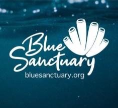 Blue Sanctuary – We Never Stop…
