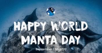 World Manta Day