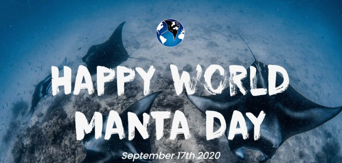 World Manta Day