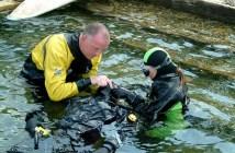 Diver Medic EFR