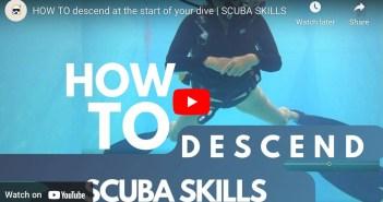 Scuba Amy Skills