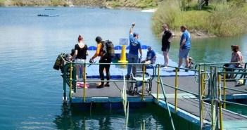 Handicapped Dive-A-Thon