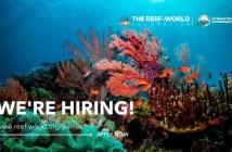 Reef-World