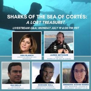 Sea of Cortes