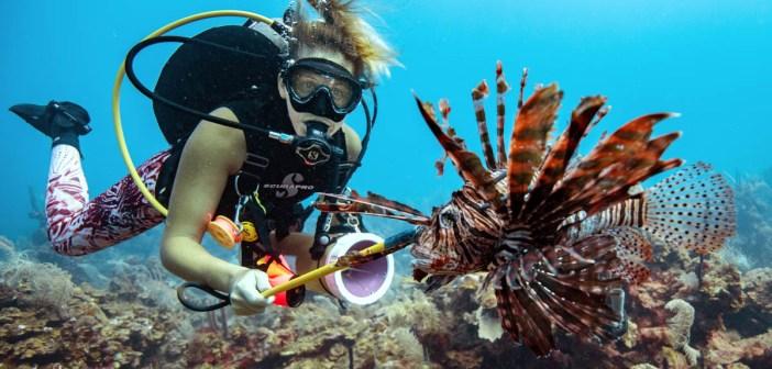 Lionfish - Hunt with Awareness