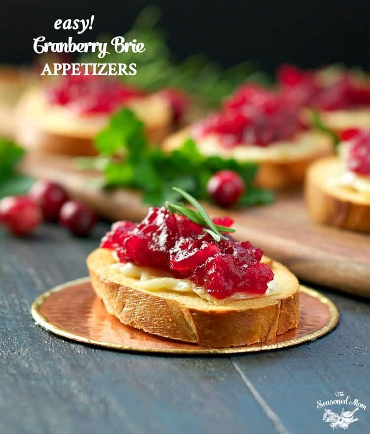 Easy Cranberry Brie Appetizers