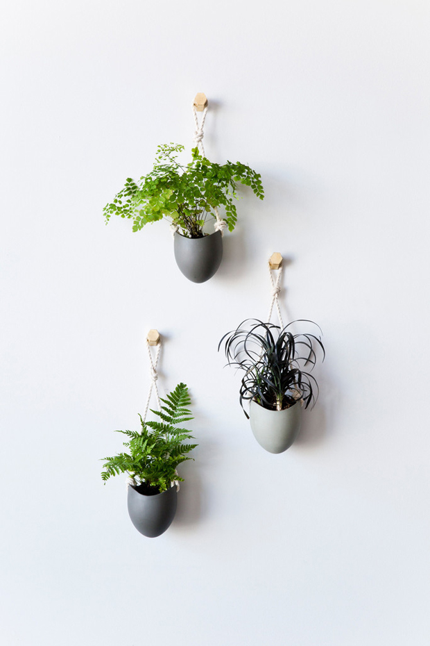 Hanging Planters By Light + Ladder | These Four Walls Blog