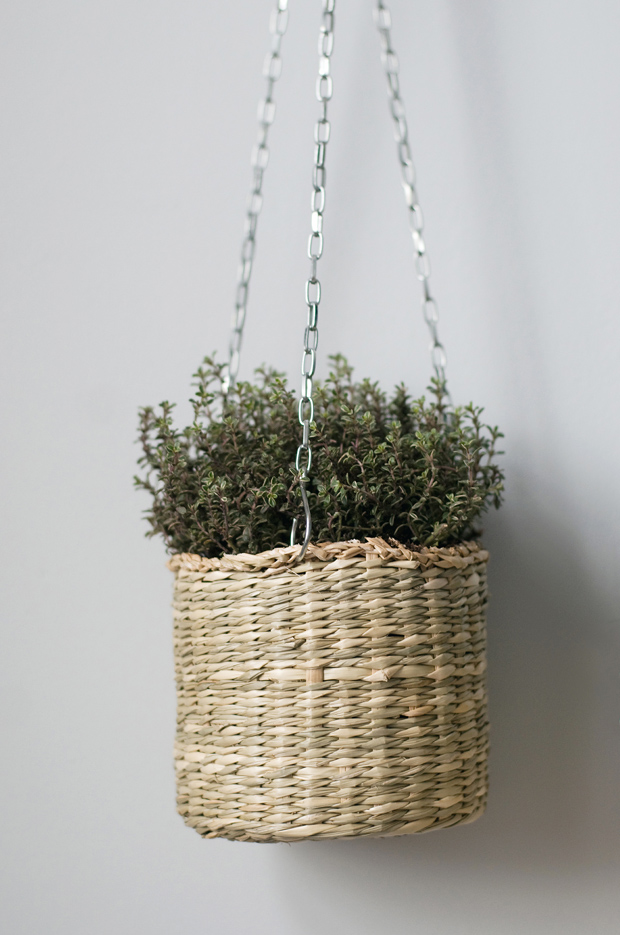 Urban Jungle Bloggers   Hanging Planters   These Four Walls