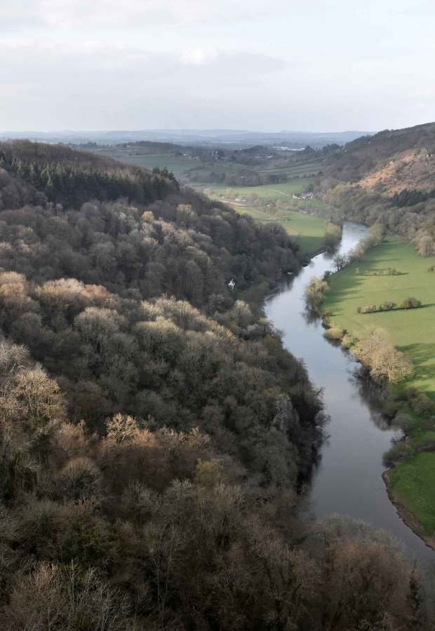 A weekend escape to the Forest of Dean | These Four Walls blog