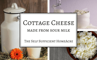Cottage Cheese - made from sour milk