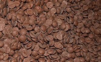 Chocolate Chips - The Self Sufficient HomeAcre