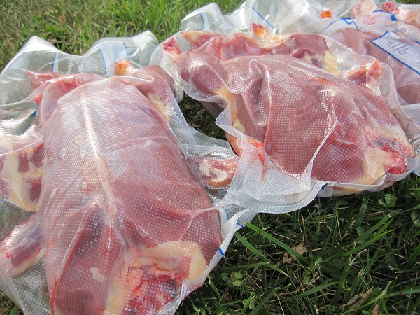 Dressed Duck Carcasses - Raising Ducks for Meat