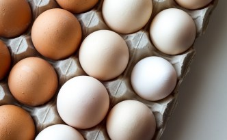Too Many Eggs? - The Self Sufficient HomeAcre