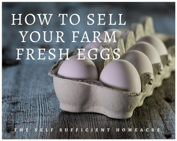How to Sell Your Farm Fresh Eggs