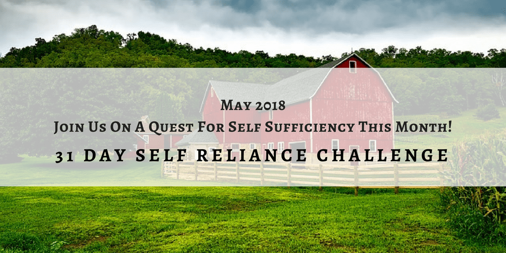 Your guide to the self reliance challenge week 2 the self your guide to the self reliance challenge week 2 sciox Gallery
