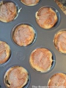Amish Cinnamon Muffins (Quick Amish Friendship Bread Muffins)