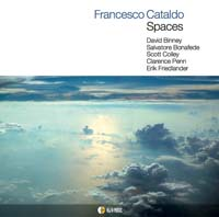 spaces-francesco-cataldo