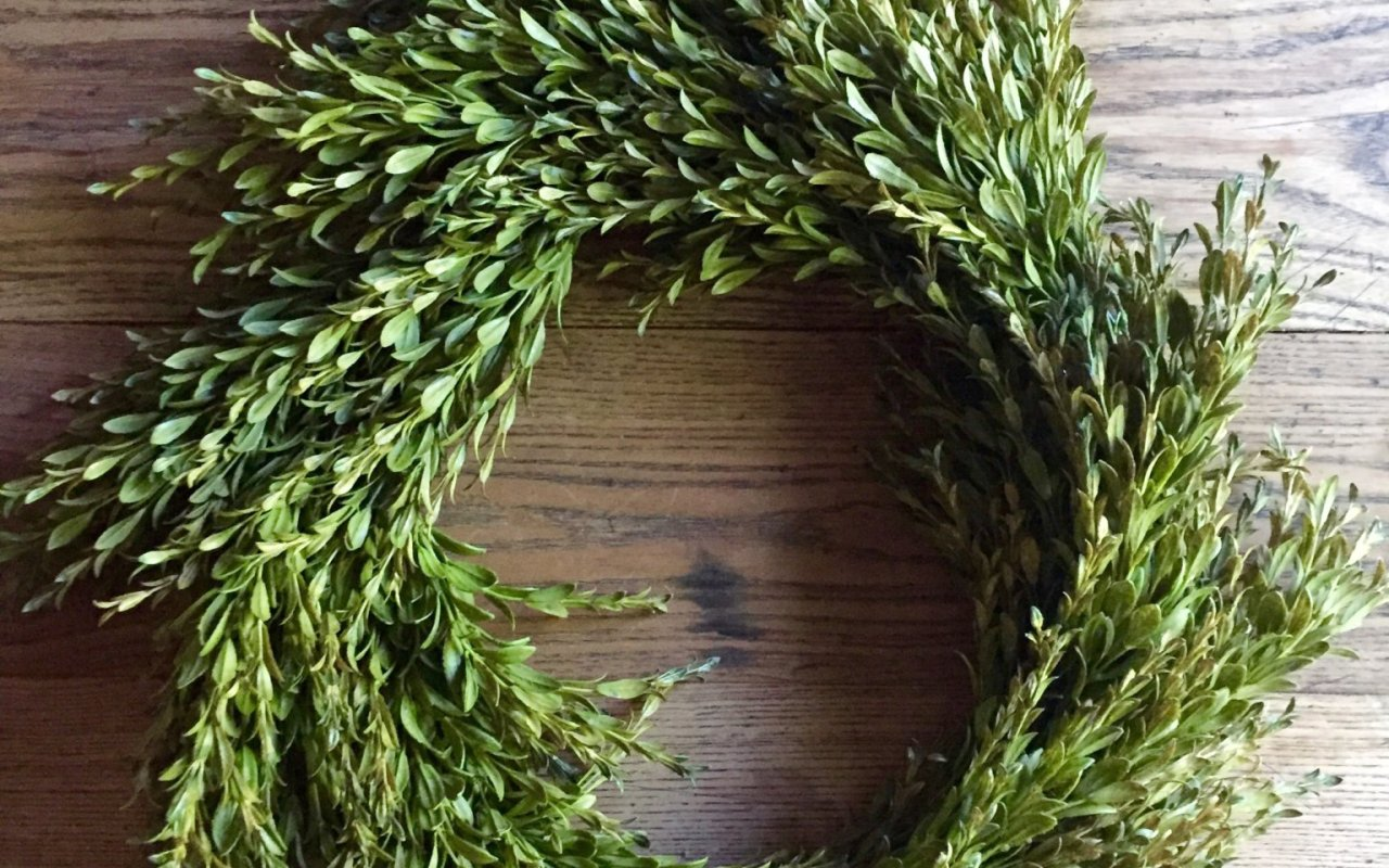 Summer Greenery Wreath